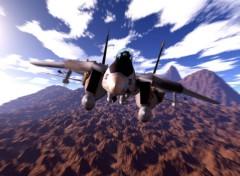 Fonds d'�cran Avions F14 Tomcat