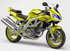 Fonds d'�cran Motos 650SV