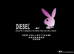 Fonds d'cran Humour Diesel & Playboy