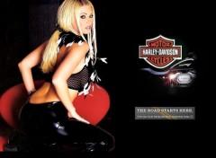 Fonds d'�cran Motos Jenna Jameson - Harley Davidson 2005