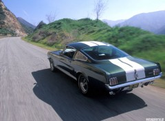 Fonds d'�cran Voitures Ford Mustang Shelby GT350 (1966)