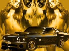 Fonds d'�cran Voitures Shelby GT 500