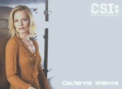 Wallpapers TV Soaps csi2