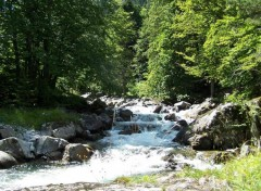 Fonds d'�cran Nature Torrent de montagne