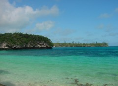 Wallpapers Trips : Oceania Ile des Pins