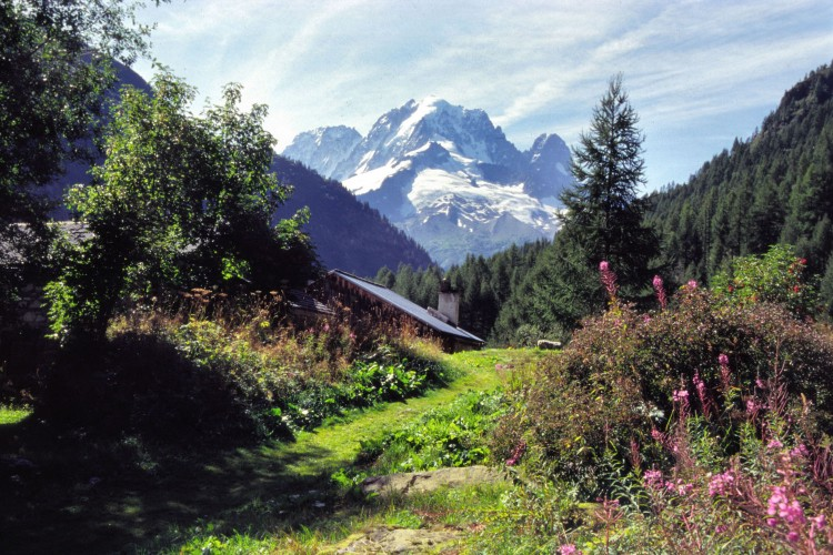Fonds d'�cran Nature Montagnes Chamonix