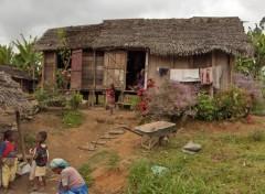 Wallpapers Trips : Africa Sur la route d'Andasib� aux Pangalanes