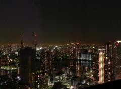 Fonds d'�cran Voyages : Asie Tokyo by night !