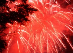 Fonds d'�cran Hommes - Ev�nements Feu d'artifice