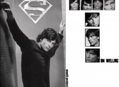 Fonds d'cran Clbrits Homme Tom Welling