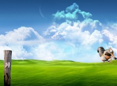 Wallpapers Cartoons Scrat