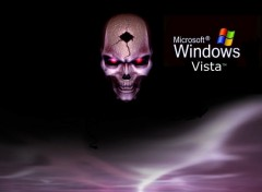 Fonds d'�cran Informatique Skull Vista