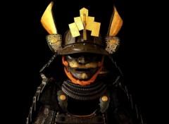 Fonds d'�cran Voyages : Asie armure samurai