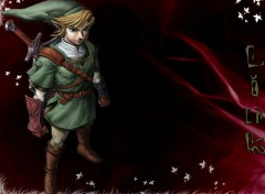 Fonds d'cran Jeux Vido Link from ZELDA TWILIGHT PRINCESS -- wii