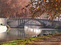 Fonds d'�cran Nature Canal du midi