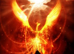 Wallpapers Fantasy and Science Fiction Phoenix