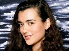 Fonds d'�cran S�ries TV NCIS : Ziva David
