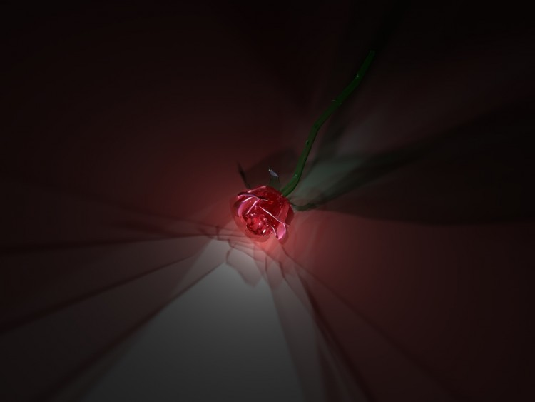 Wallpapers digital art wallpapers 3d cinema 4d rose for 4d wallpaper for home