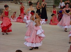 Fonds d'�cran Sports - Loisirs flamenco