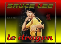 Fonds d'�cran C�l�brit�s Homme Bruce Lee le dragon
