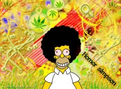 Wallpapers Cartoons homer le junki