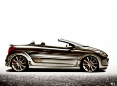 Fonds d'�cran Voitures Peugeot 207 cc Concept TH