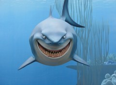 Wallpapers Cartoons LE REQUIN (Le monde de N�mo - Disney)