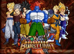 Fonds d'�cran Manga Dragon ball z burst limit