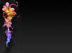 Wallpapers Digital Art Gouttes de fleurs