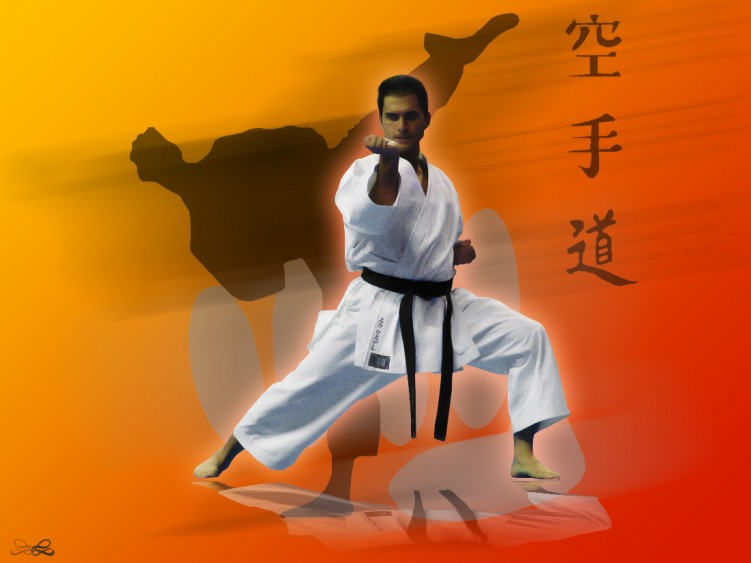 Wallpapers Digital Art > Wallpapers Sports Kata Karate Shotokan by ...