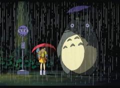 Wallpapers Cartoons Totoro