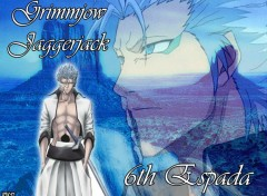Fonds d'�cran Manga Grimmjow Jaggerjack by rtk12