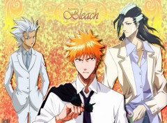 Fonds d'�cran Manga Bleach Elegancy by rtk12