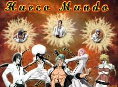 Fonds d'�cran Manga Hueco Mundo
