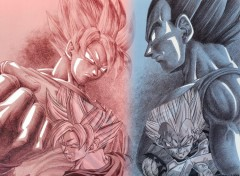 Fonds d'�cran Manga Son Goku VS Vegeta