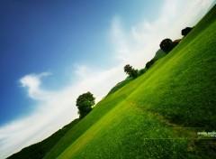 Fonds d'�cran Nature Vert et bleu