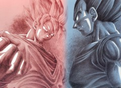 Fonds d'�cran Manga Goku & Vegeta version simple