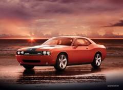 Fonds d'�cran Voitures dodge challenger
