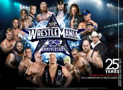 Fonds d'�cran Sports - Loisirs wrestlemania 25