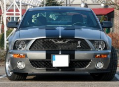 Fonds d'cran Voitures Ford Mustang Shelby GT 500