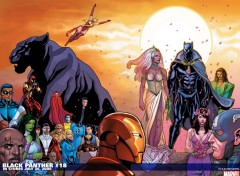 Fonds d'�cran Comics et BDs black panther