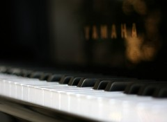 Wallpapers Music Piano :)
