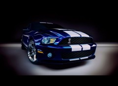 Fonds d'cran Voitures Ford-Shelby-GT500