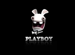 Fonds d'�cran Humour Playboy cr�tin