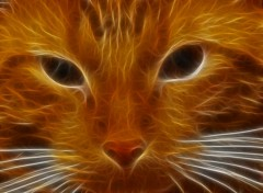 Fonds d'�cran Art - Num�rique chats de feu