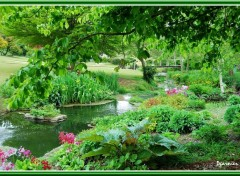 Fonds d'�cran Nature Jardin de printemps.