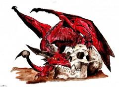 Fonds d'�cran Art - Peinture Pseudo-Dragon