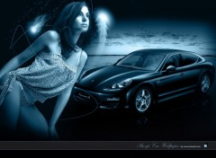 Fonds d'cran Voitures Pin-up Car wallpaper 2010 porsche panamera
