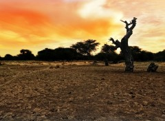 Wallpapers Trips : Africa No Man's Land