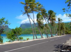 Wallpapers Trips : Oceania Vent � Bora Bora